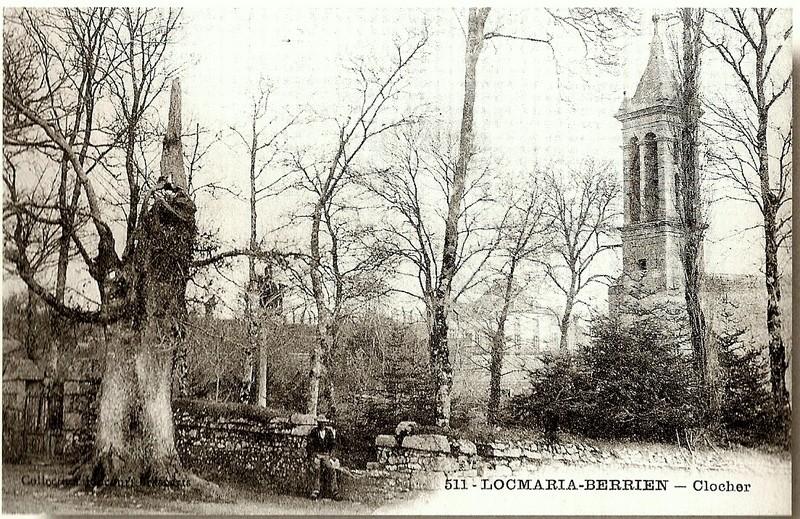 ARBRES REMARQUABLES  de L'ARREE Locmar14