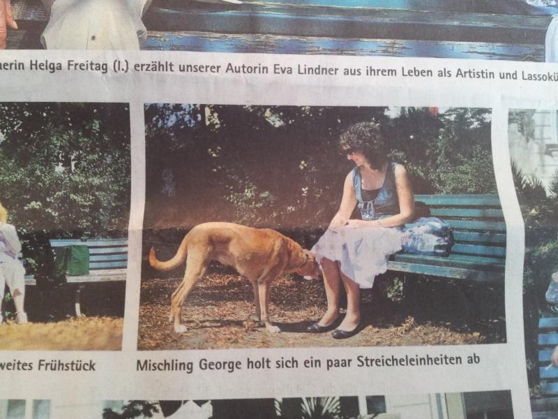 George....ein liebenswerter älterer Podenco - Seite 3 2011-015