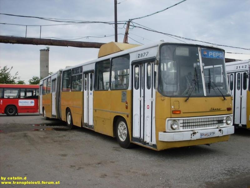 Ikarus 260 | 280 Sdc10132