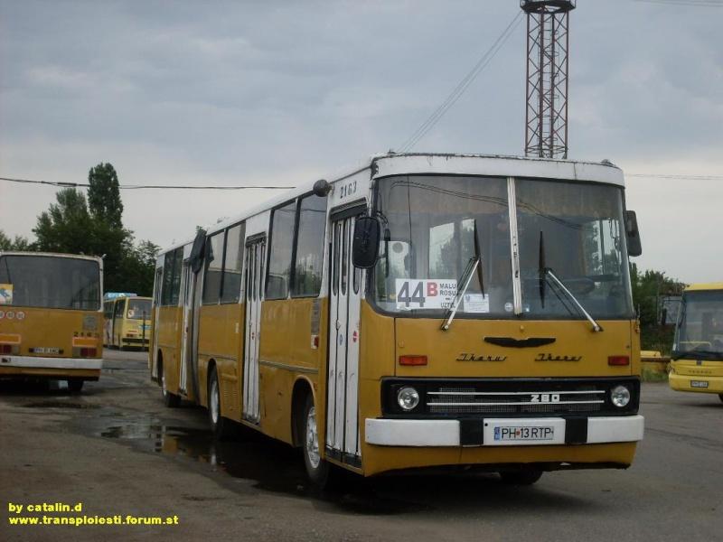 Ikarus 260 | 280 Sdc10133