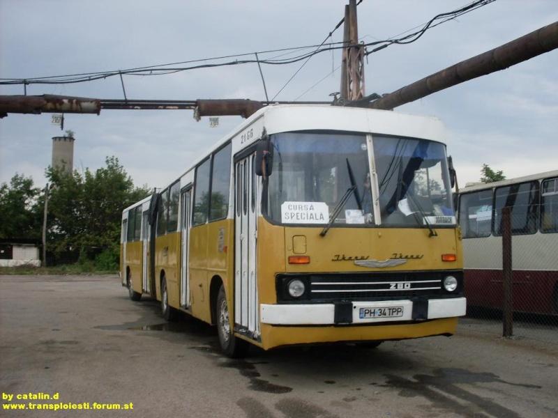Ikarus 260 | 280 Sdc10134