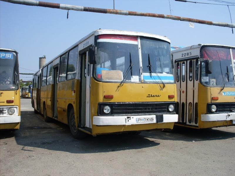 Ikarus 260 | 280 Sdc10511