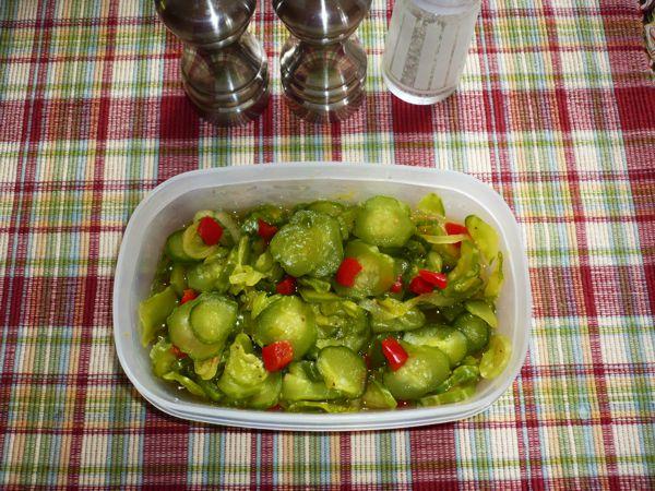 Freezer Pickles Freeze10