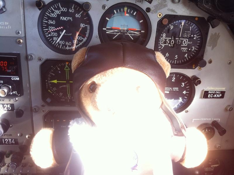 Les vols de la mascotte - Page 10 Img_2921