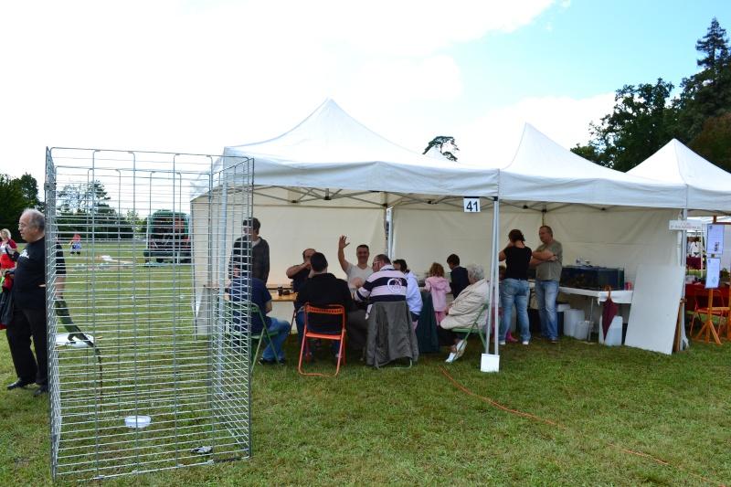 Un dimanche à la campagne 2011 - Parc du lycée agricole de Fondettes  Dsc_0029
