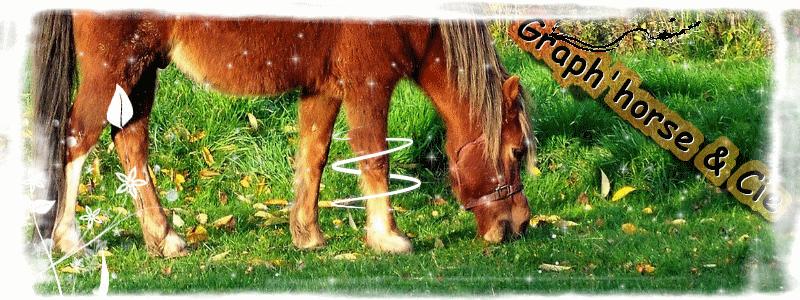 Graph'horse & cie