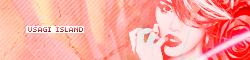 Notre fiche & logos Usagib13