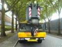 Les grues de Neremat (Belgique) Dsc00514