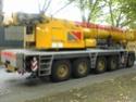 Les grues de Neremat (Belgique) Dsc00518