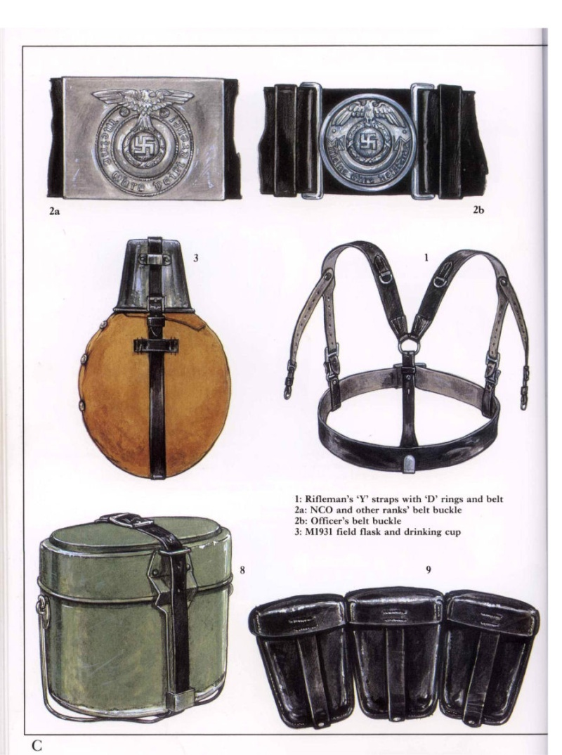 HEER et Waffen - les differents brelages Waffen19
