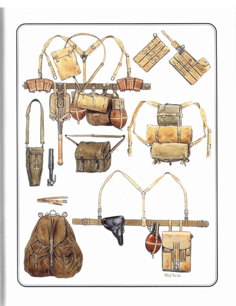 HEER et Waffen - les differents brelages Wehrma12