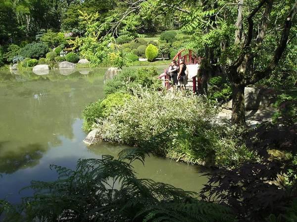 Jardin Japonais à Toulouse Jap610