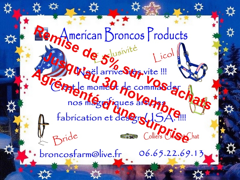 Equipement pour chevaux made in USA Remise10