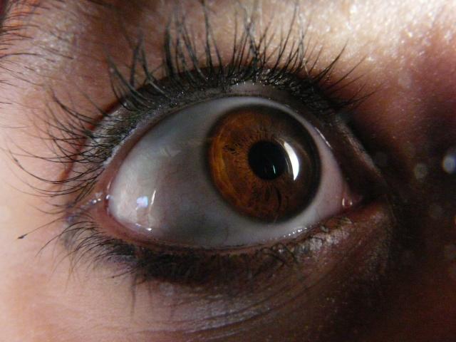 vos yeux! ( attention âmes sensibles: oeil en gros plan ^^) - Page 12 P1280413