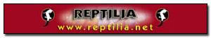 Asociacion Española de Terrariofilia Reptil10