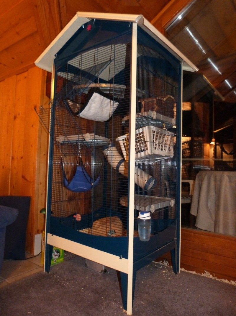 Ma cage P1030512