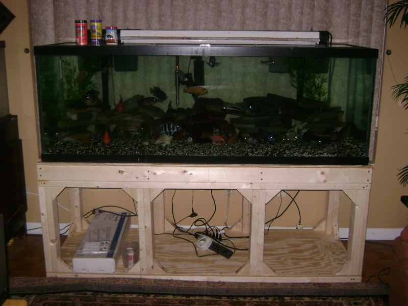 DIY 180 GAL. STAND w/ PICS Pictur19