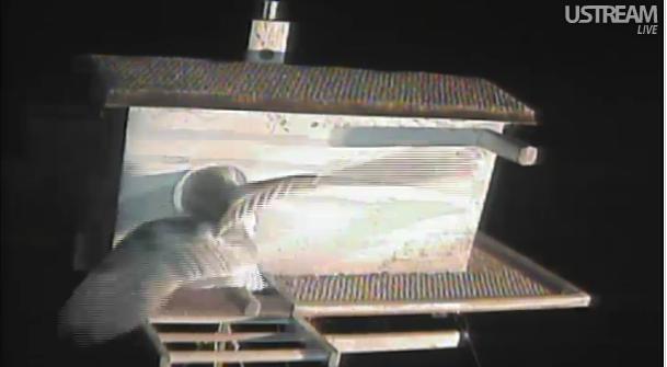 La webcam d'une chouette effraie  - Page 3 Arrive10