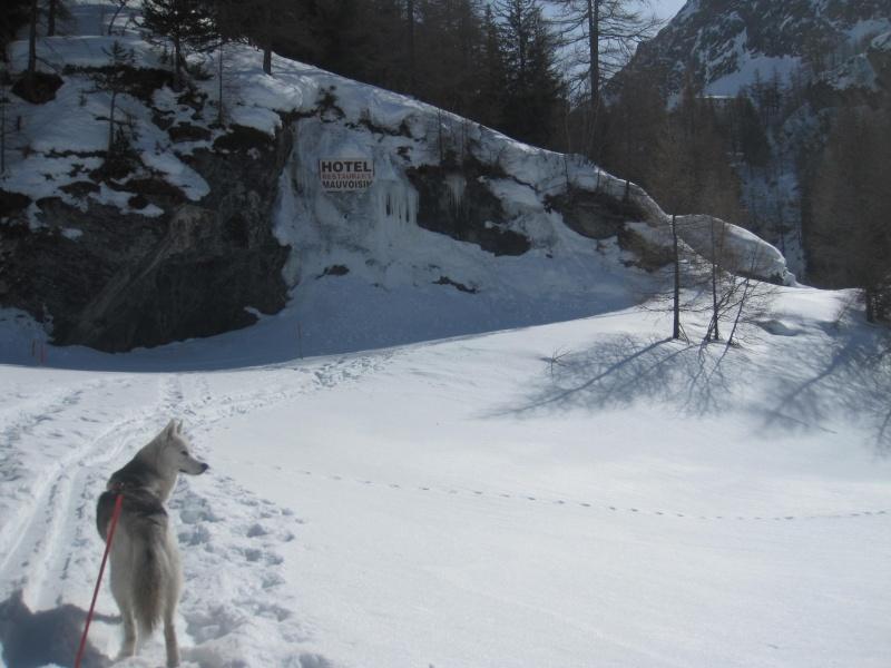 Courses de Saskia dans la neige, printemps 2012 1313