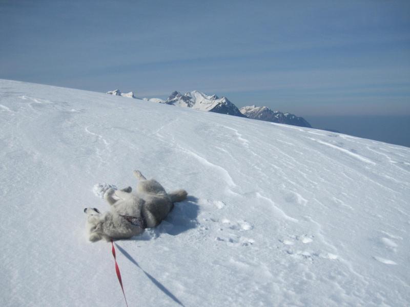 Courses de Saskia dans la neige, printemps 2012 1421