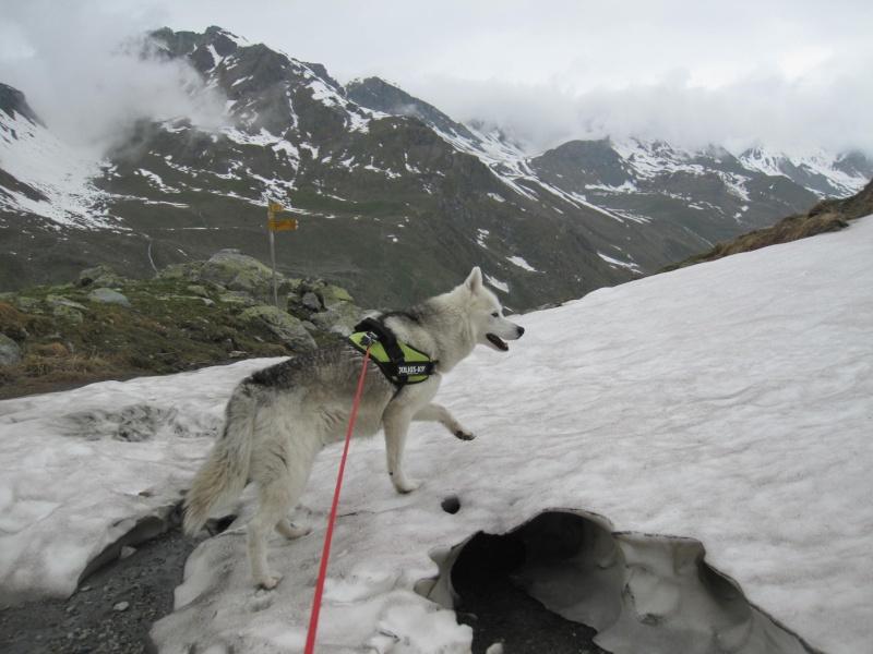 Saskia a fêté ses 6 ans dans la neige... 2132