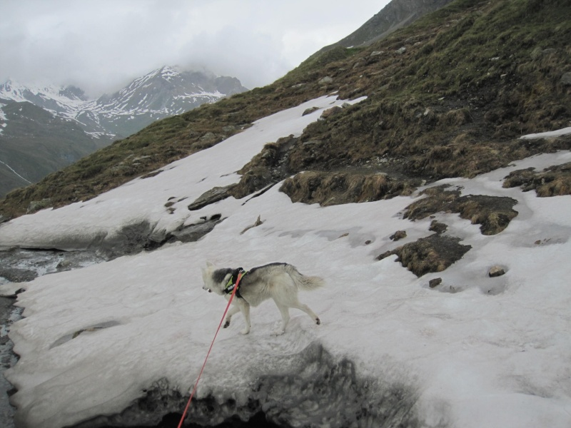 Saskia a fêté ses 6 ans dans la neige... 2230
