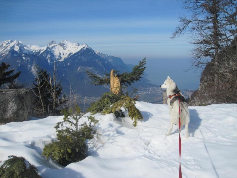 Courses de Saskia dans la neige, printemps 2012 224