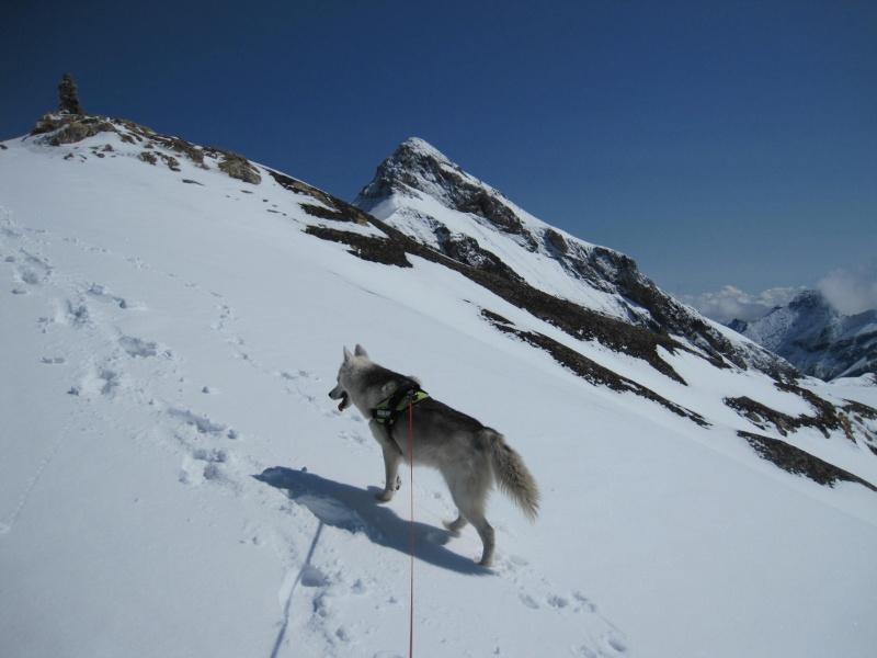 Saskia dans la neige poudreuse de juillet 3117