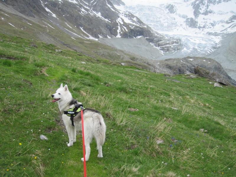 Saskia a fêté ses 6 ans dans la neige... 459