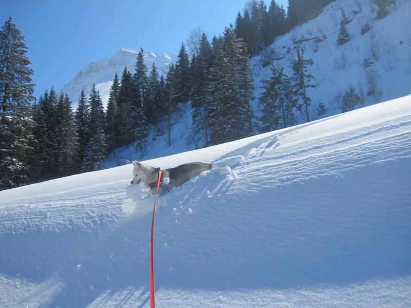 Courses de Saskia dans la neige, printemps 2012 726