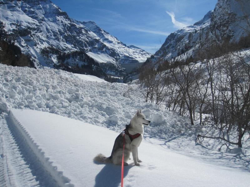 Courses de Saskia dans la neige, printemps 2012 816