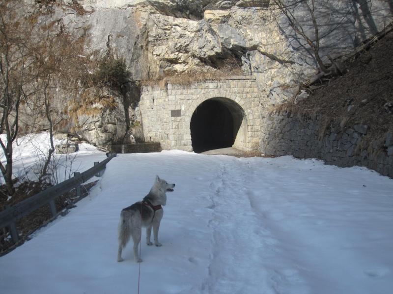 Courses de Saskia dans la neige, printemps 2012 822