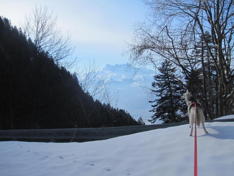 Courses de Saskia dans la neige, printemps 2012 923