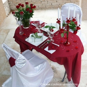 Pleasing Deco Table Saint Valentin Home Interior And Landscaping Ferensignezvosmurscom