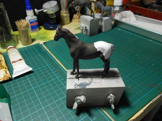 le voleur de chevaux Dscn0422