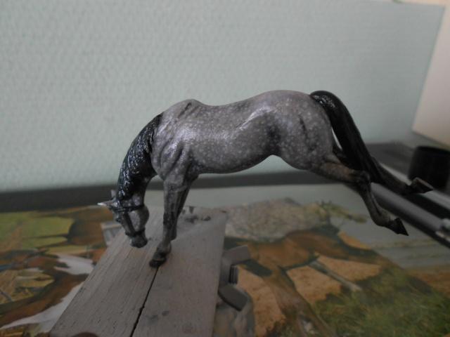 le voleur de chevaux Dscn0513
