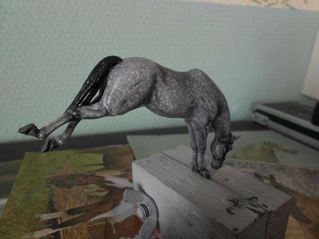 le voleur de chevaux Dscn0514