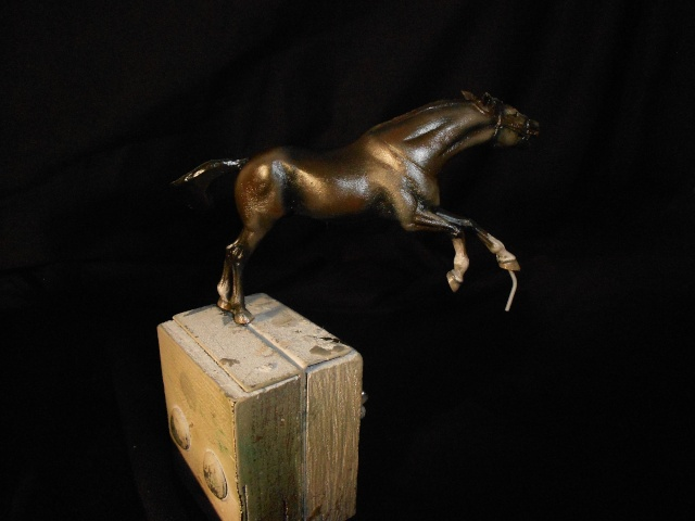 le voleur de chevaux Dscn0524