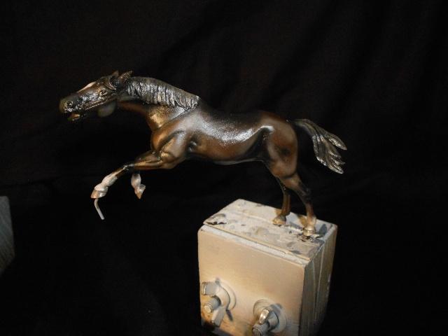 le voleur de chevaux Dscn0525