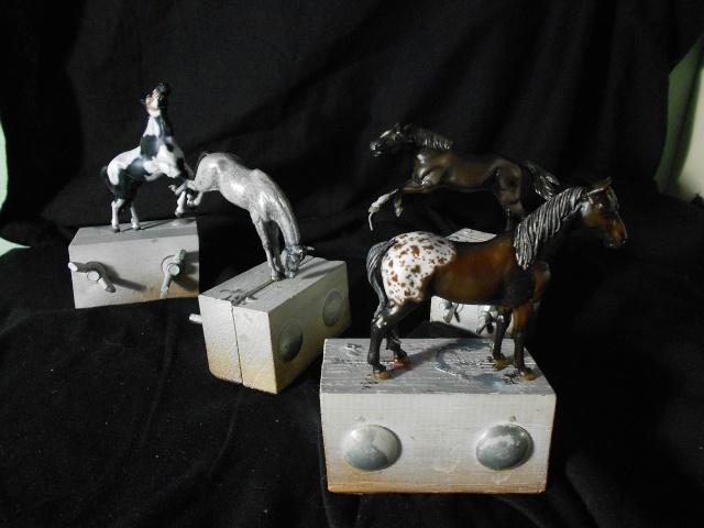 le voleur de chevaux Dscn0526
