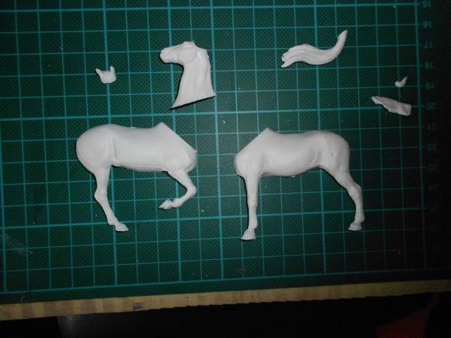 le voleur de chevaux Dscn0527