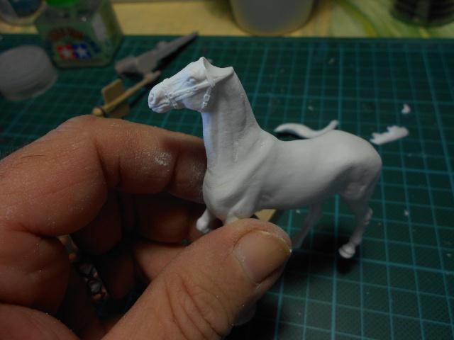 le voleur de chevaux Dscn0537