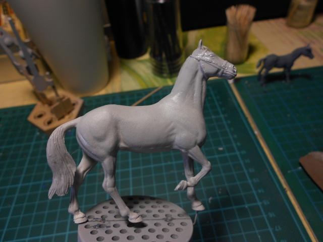 le voleur de chevaux Dscn0541