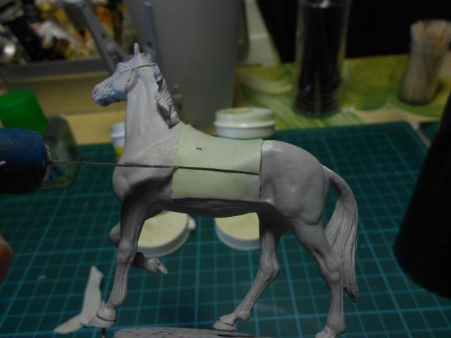 le voleur de chevaux Dscn0549