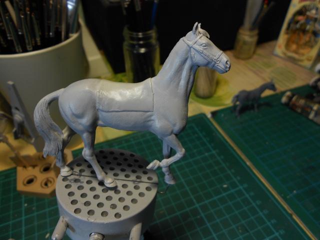 le voleur de chevaux Dscn0551