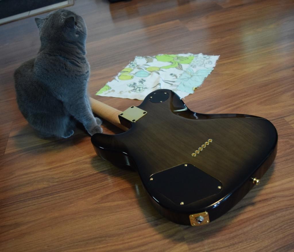 Vos photos de Guitare - Page 25 Dsc_0111