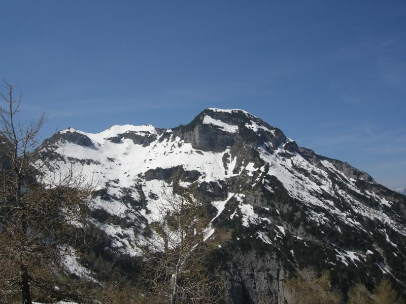[Greppismo] Monte Pinzat 2061 m. - Pagina 2 Lis_ci11