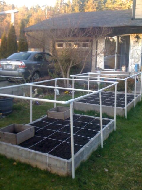 Brand new to SFG!  My first efforts... Garden10