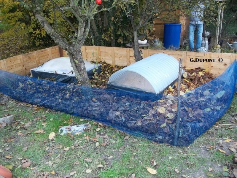 Préparations pour l'hibernation - adultes et juvéniles 1011