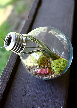 Recycler ses ampoules 0710